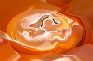 chiaroscuri arancioni in forma rotonda fluida