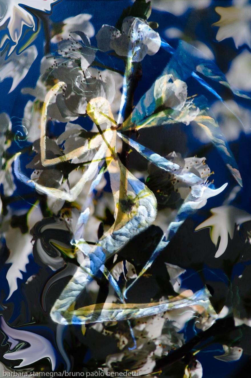 immagine centrale screziata simile ad angelo con le ali su motivo di colore bianco e blu