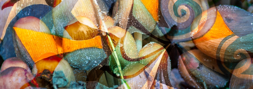 dinamismo di riccioli,forme astratte geometriche e rotonde con colori screziati e trasparenze