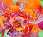 immagine astratta dinamica con forme astratte in movimento tipo un turbino di fiori, in dominante di colore rosso e toni arancioni